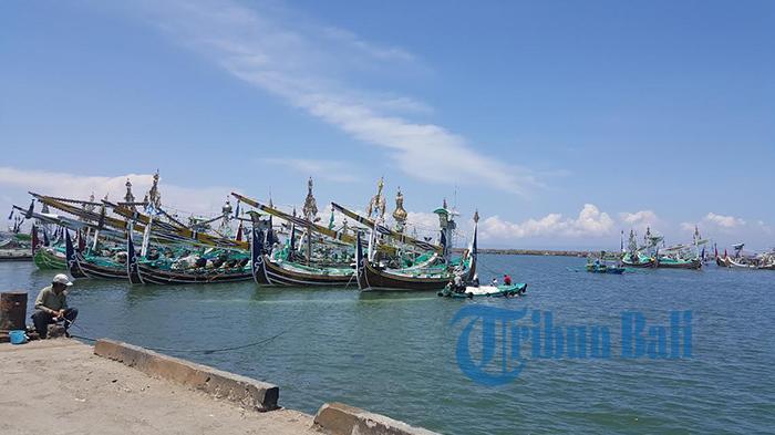 Ratusan Perahu Selerek di Pelabuhan Perikanan Nusantara Pengambengan di Desa Pengambengan, Kecamatan Negara terparkir rapi selama beberapa bulan belakangan ini lantaran sepi tangkapan ikan Lemuru, Rabu (28/9/2016). FOTO: Tribun Bali/ I Gede Jaka Santhosa.